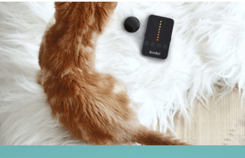 Pet Tracker, Tabcat
